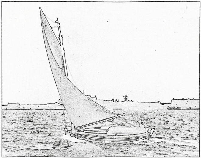 Falcon under sail