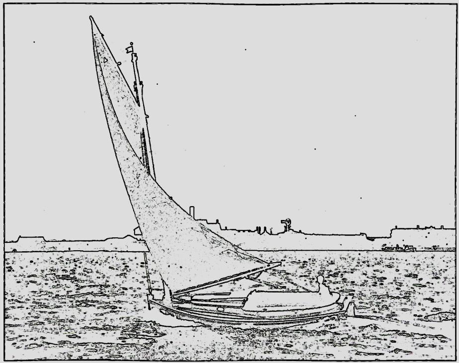 Falcon undersail