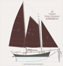 Ameijoa Sail Plan